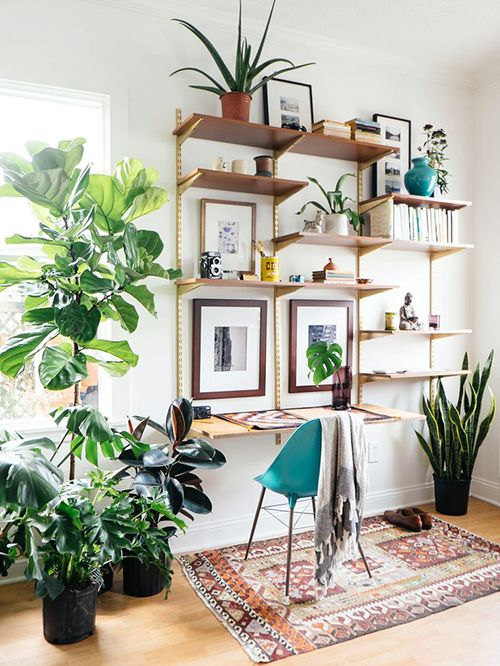 interior decoracion plantas verdes ideas