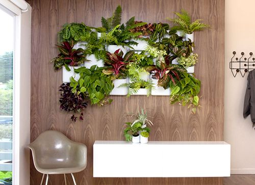 plantas pared ideas decoracion eco tendencias interiorismo