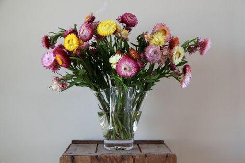 Decoración con flores para cambiar tu casa