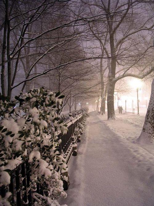 ciudad boston nieve