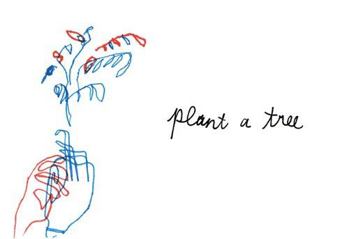 plant a tree hunt