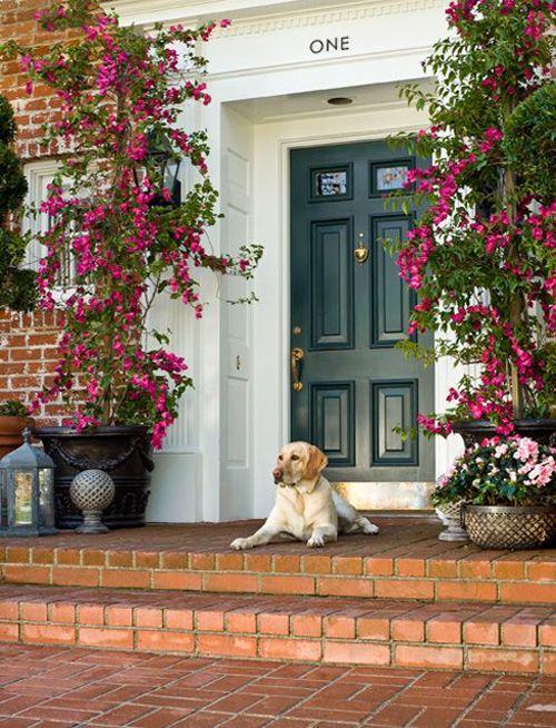 puerta azul oscuro shelterness.com