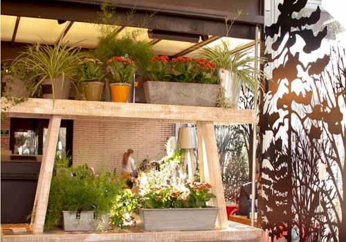 detalle plantas terraza cubierta restaurante cocina san anton lacocinadesananton.com