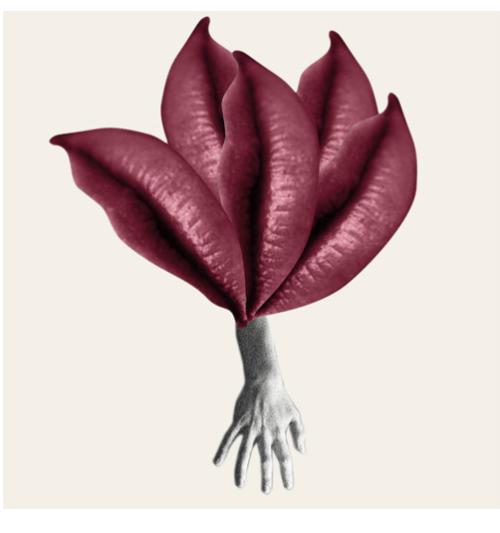 cecilia bergamin obra victoria art