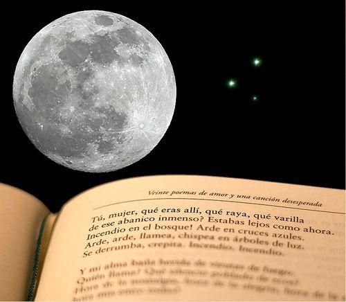noche libro dia mundial libro dleganes.net