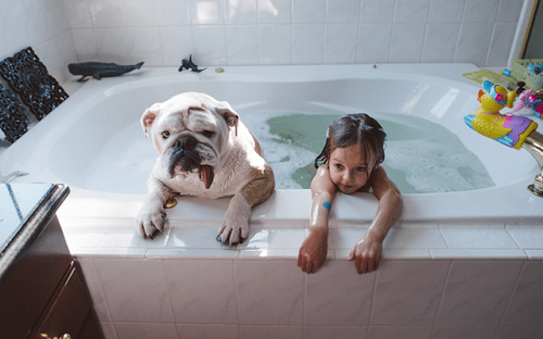 Fotografía de Harper y Lola bañándose