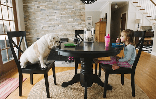 Fotografía de Harper y Lola desayunando