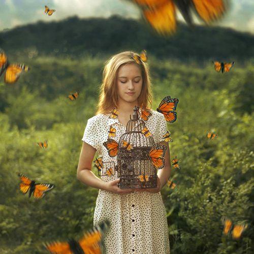 Retrato mariposas