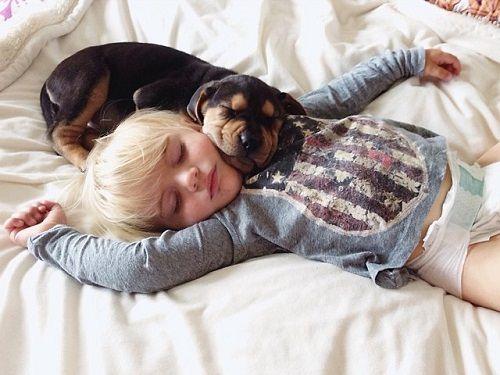 Theo y Beau dormitando