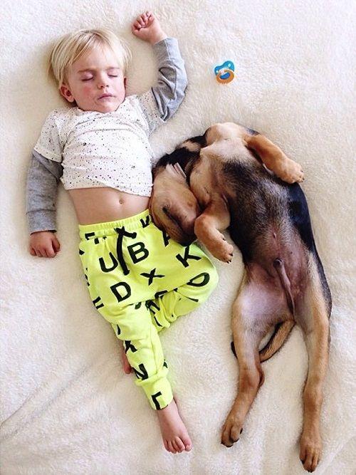 Theo y Beau en la siesta