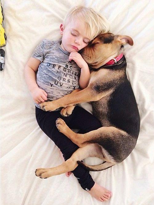 Theo y Beau juntos abrazados