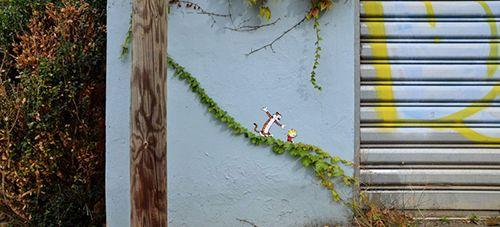 Oak calvin y hobbes