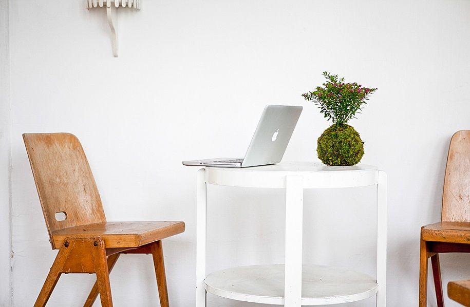 Los Kokedamas, un DIY decorativo con plantas