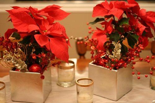 estilo decoracion de navidad flor de pascua (11)