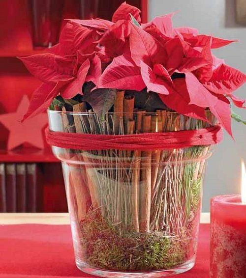 estilo decoracion de navidad flor de pascua (13)