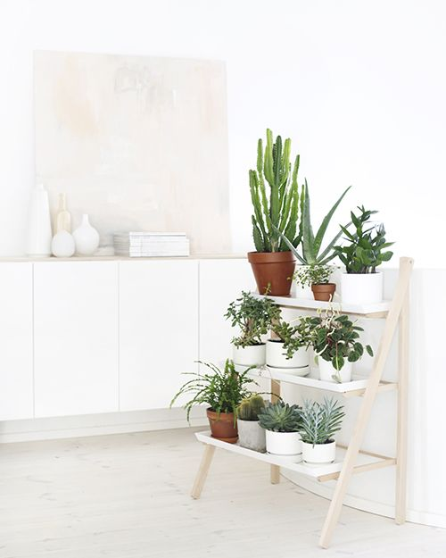 escalera plantas verdes macetas decoracion interiores ideas diy