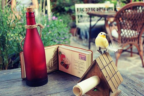 jardin secreto salvador bachiller montera madrid casita pajaro carta terraza