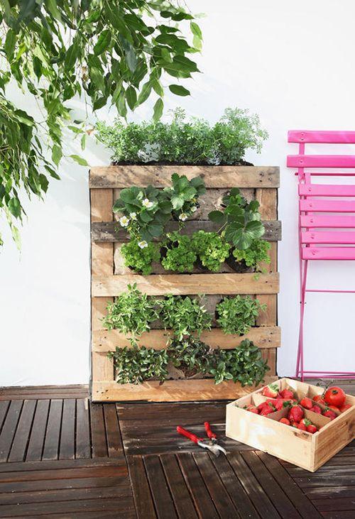jardin vertical huertos urbanos palets