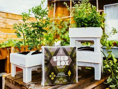 seedbox mini huertos urbanos autocultivo plantas
