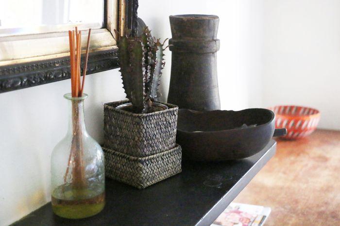 detalles chimenea cactus