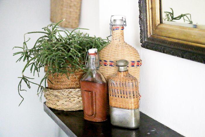 detalle plantas y botellas