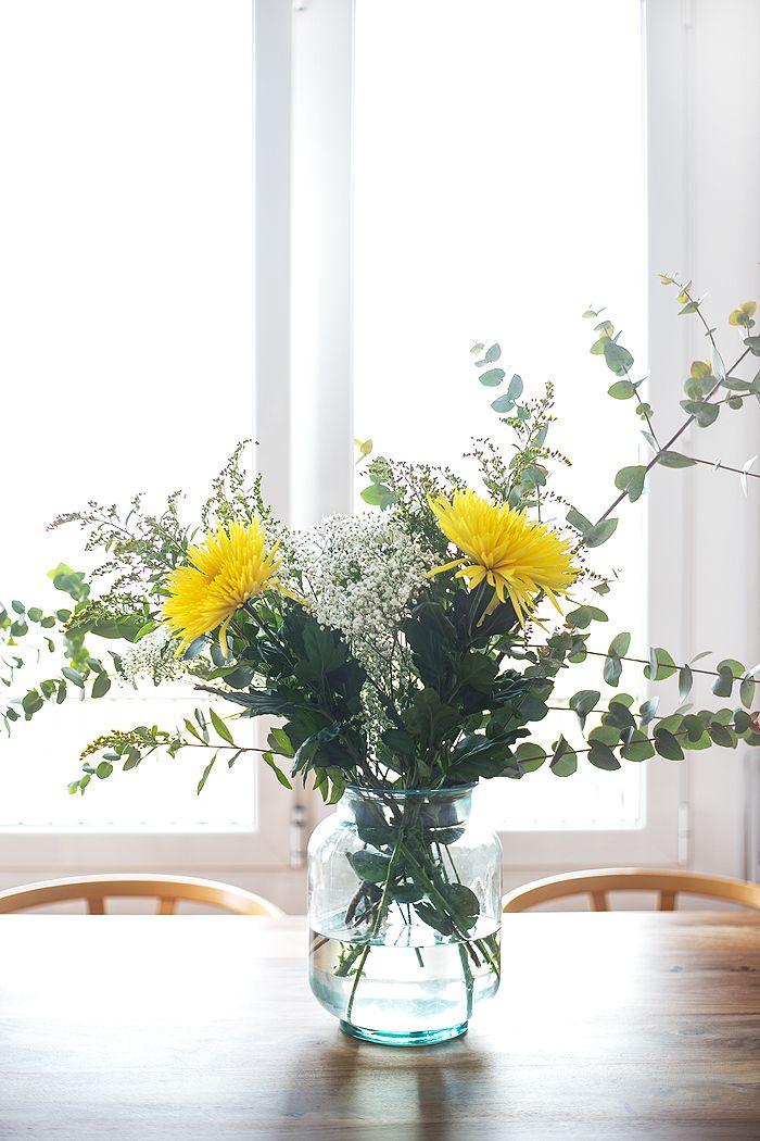 flores amarilla ventanal luz