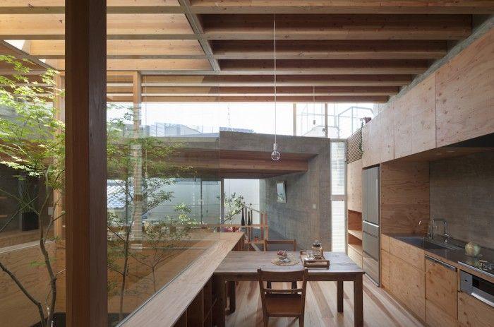 cocina y plantas