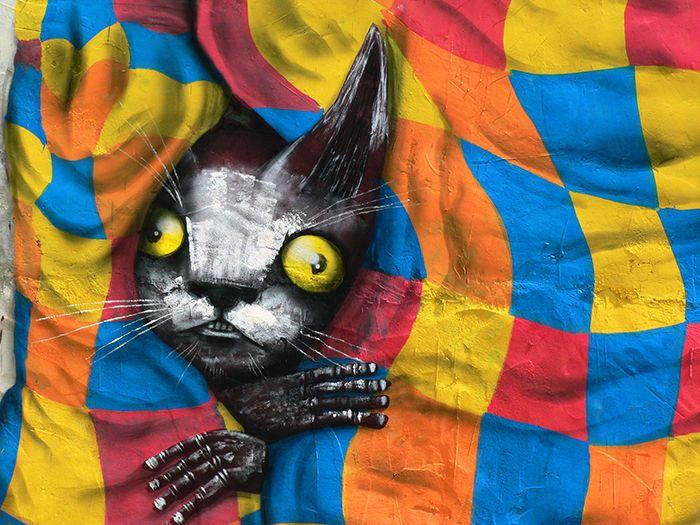 miau fanzara gato thiago goms festival street art arte urbano rural callejero pueblo castellon graffiti