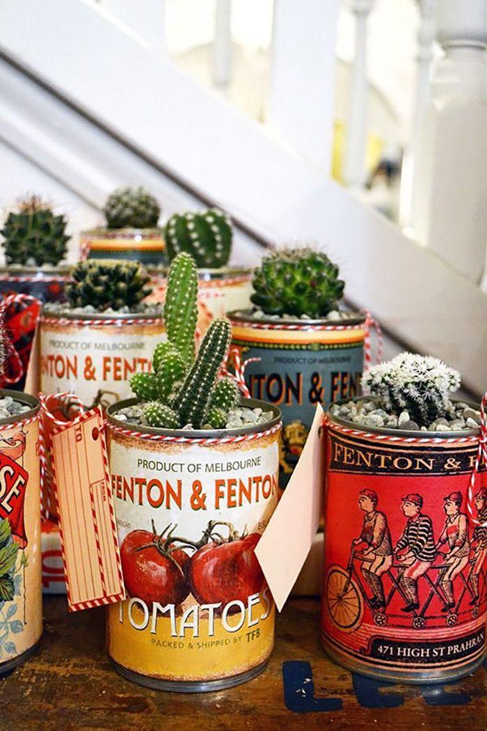 cactus tomate