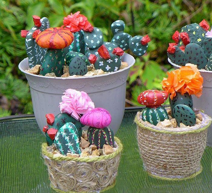 cactus con rocas