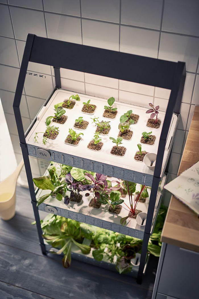 ikea-coleccion-indoor-gardening-2016