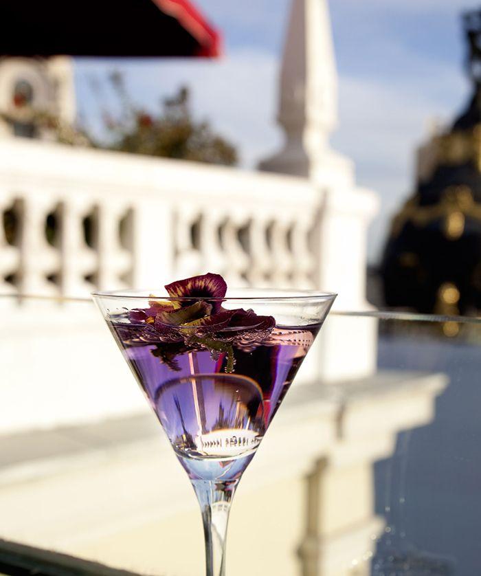 coctel en terraza