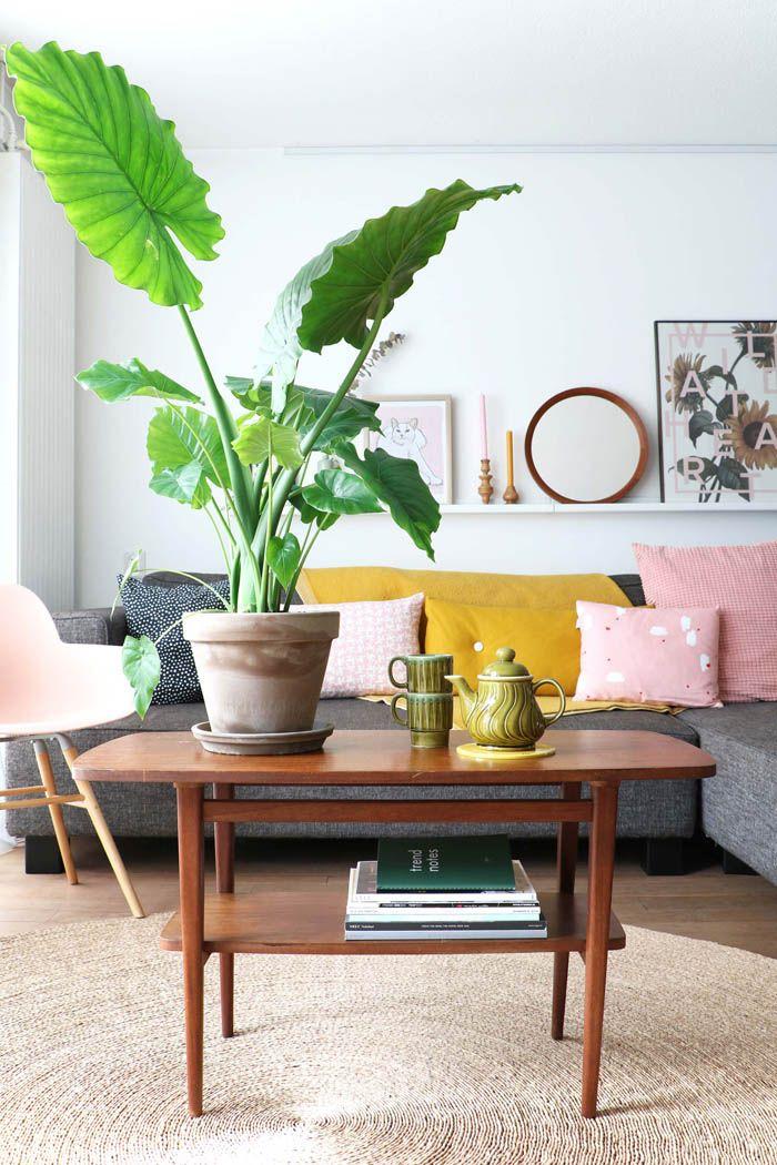salon nordico boho con cojines amarillos y rosas