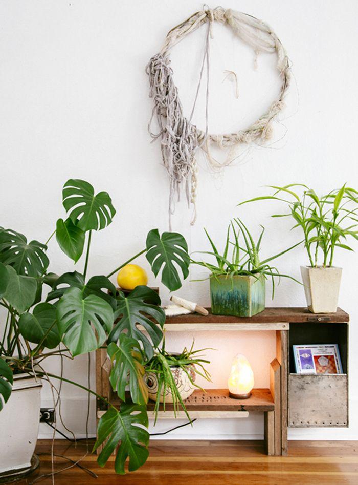 rincon boho con plantas y corona macrame