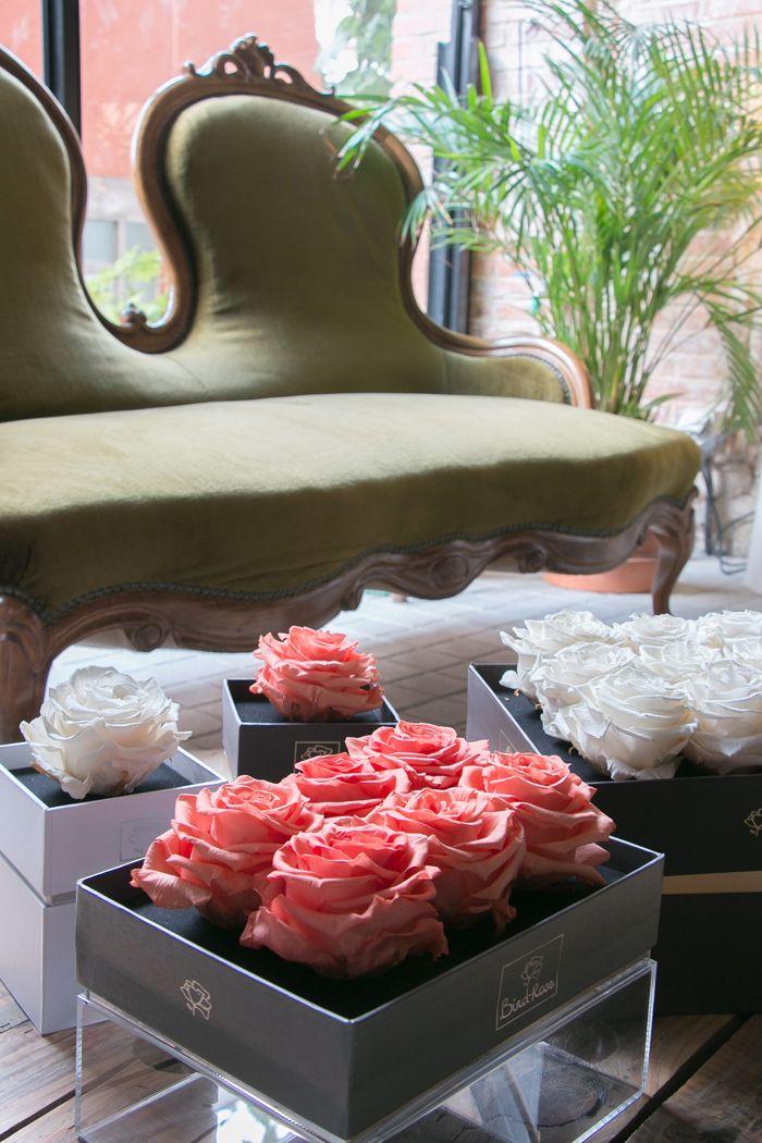 cajas de rosas preservadas cuadradas