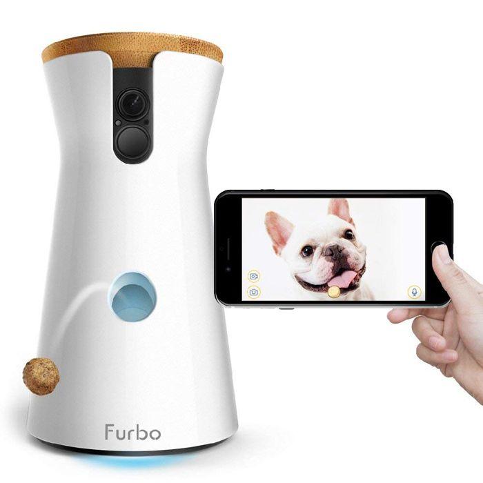 maquina videovigilancia perros