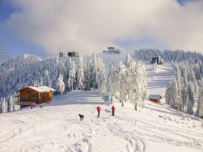 Propuestas para disfrutar de la nieve estas Navidades