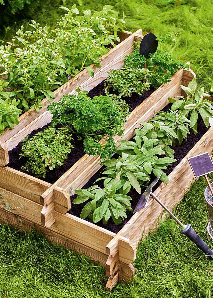 huerto urbano y jardin con verduras ecologicas