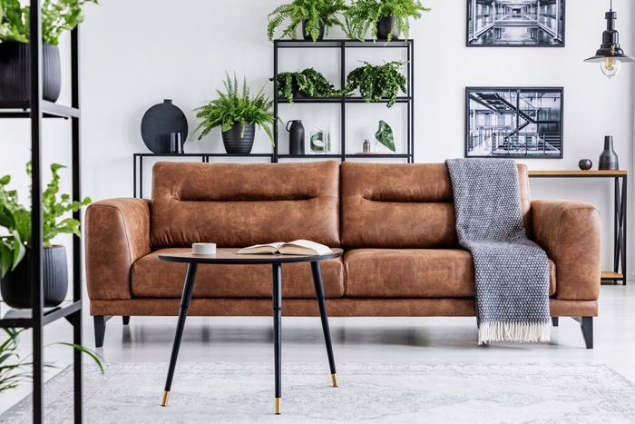 sofa de cuero marron con estanteria plantas