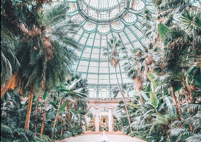 jardines botanicos victor horta