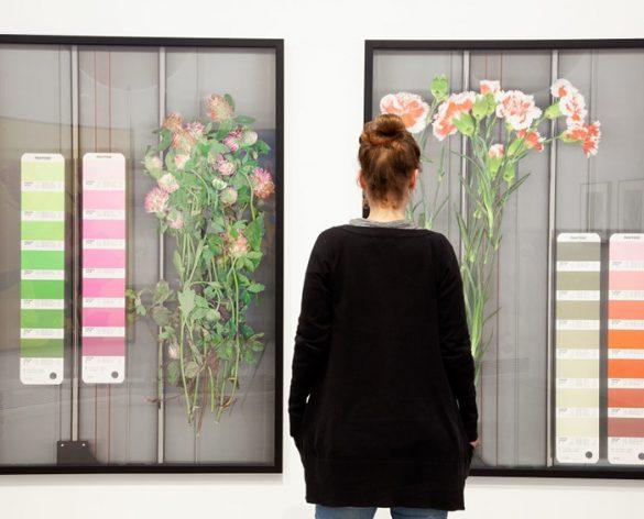 Fundación Per Amor a l'Art flores fotografia