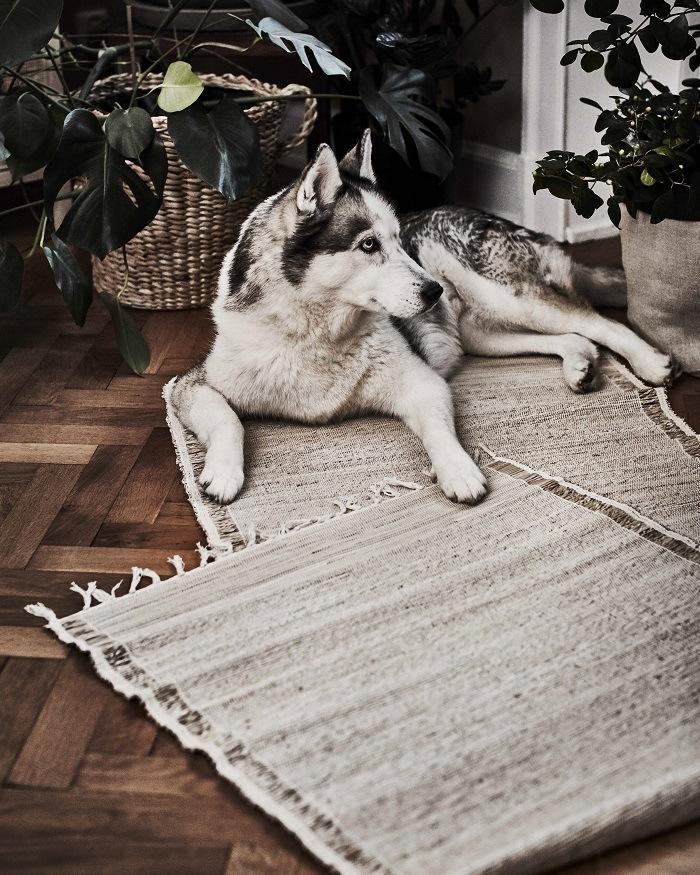 alfombra botanisk