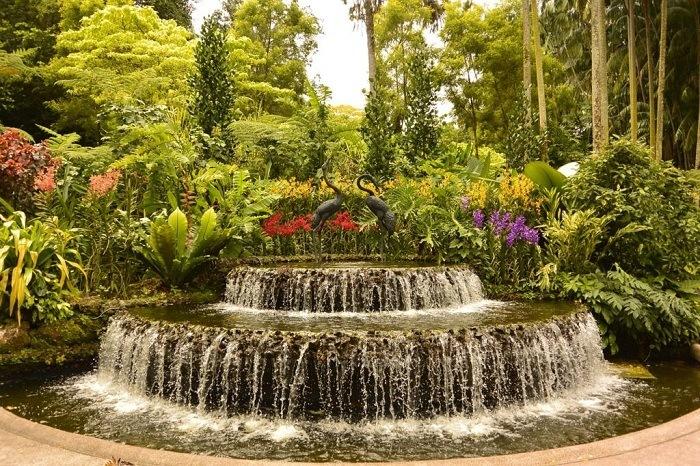 Jardin de Singapur