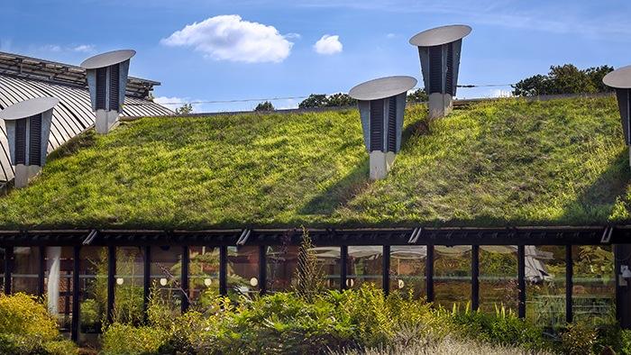 casa techo hierba
