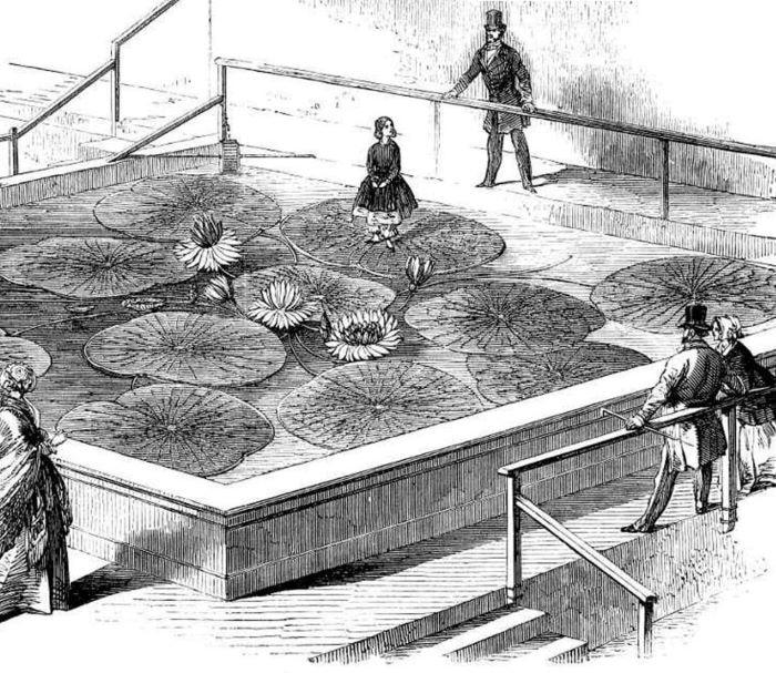 Jardines de Joseph Paxton