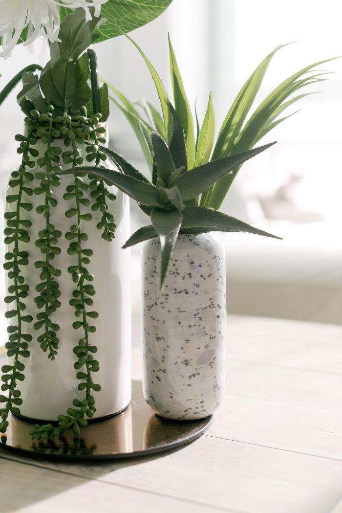 Colorterapia decoración interior en color verde con plantas