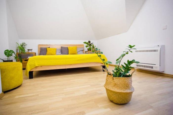 Habitación con suelo de madera, cama de matrimonio con sabanas amarillas y plantas